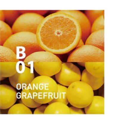 De Botanical air B01 heeft een frisse geur met een lichte zoetheid, die zeker iedereen zal aanspreken Ingrediënten: sinaasappel, grapefruit, bergamot