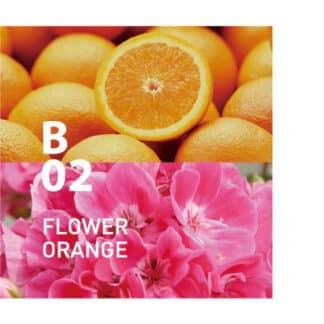 De Botanical air B02 bloemengrootheid en de frisheid van citrus worden moeiteloos met elkaar vermengd Ingrediënten: sinaasappel, bergamot, geranium