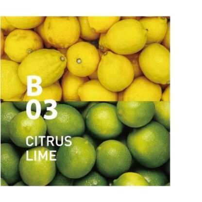 De Botanical air B03 is een gemengde citrusgeur met een gevoel van frisheid en een zuivere afdronk Ingrediënten: citroen, limoen, grapefruit