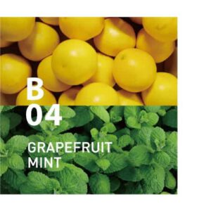 B04 GRAPEFRUIT MINT