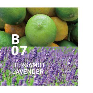 De Botanical Air B07 is zoet en zacht, voor eindeloze ontspanning Ingrediënten: bergamot, lavendel, koriander