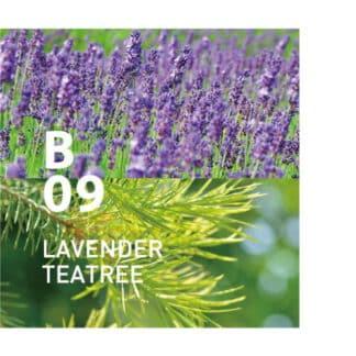 De Botanical air B09 heeft een verkwikkende frisheid gecombineerd met een gevoel van rust Ingrediënten: lavendel, theeboom, eucalyptus