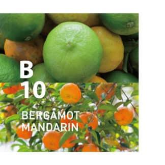 Botanical Air B10 heeft een zachte citrusgeur die uw dag een sprankeling geeft Ingrediënten: bergamot, sinaasappel, mandarijn