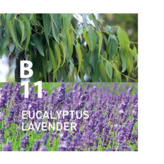 De Botanical Air B11 is intense rust met een geur die doet denken aan een zachte bries Ingrediënten: eucalyptus, lavendel, rosalina