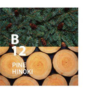 Botanical Air B12 is Intense rust met een geur die doet denken aan een zachte bries Ingrediënten: eucalyptus, lavendel, rosalina