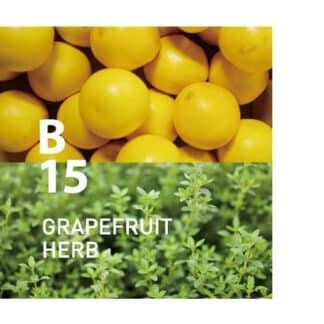 Botanical Air B15 bevat grapefruit- en kruidengeuren voor diepe helderheid Ingrediënten: Grapefruit, Spike Lavender, Lemon Thyme