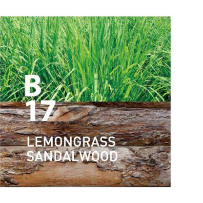 Botanical Air B17 heeft een oosterse geur die je zintuigen heerlijk prikkelt Ingrediënten: citroengras, sandelhout, citroen