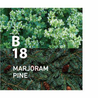 Botanical Air B18 is een ontspannende geur met de zachte, frisse geur van buiten Ingrediënten: marjolein, den, citroen