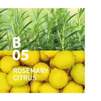 De Botanical air B05 heeft een rijk en scherp, een geur die de zintuigen prikkelt Ingrediënten: rozemarijn, citroen, shiso