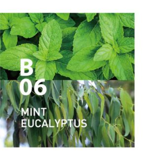 De Botanical Air B06 en schone, frisse geur om je geest te scherpen Ingrediënten: groene munt, eucalyptus, limoen