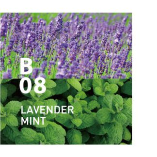 De Botanical air B08 heeft de elegantie van lavendel en munt omringen je in een warme omhelzing Ingrediënten: lavendel, pepermunt, blauwe cipres