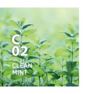 C02 CLEAN MINT, clean air van AT-AROMA. Deze geur zuivert de lucht met de verfrissende zoetheid van munt Ingrediënten: Eucalyptus Globulus, Rozemarijn, Teatree, Groene munt