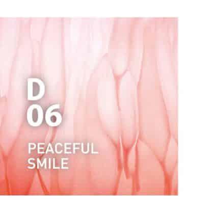 Design air D06 PEACEFUL SMILE is De zachte geur van citrus en kruiden, die een natuurlijke elegantie oproept Ingrediënten: grapefruit, kamille, bergamot, cipres, howood, enz.