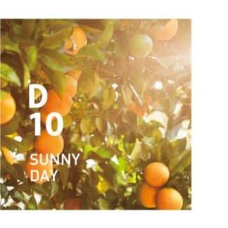 De Design air D10 heeft een perfect uitgebalanceerde geur die de warme zonnestralen en de overvloed aan natuur oproept