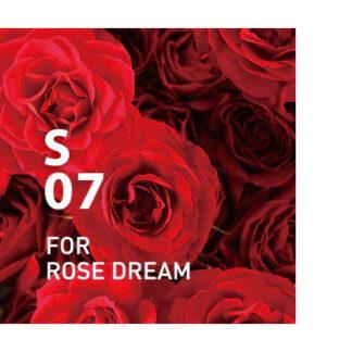 De supplement Air S07.Het elegante en gracieuze parfum van rozen verbetert de kwaliteit van je slaap. Ingrediënten: Rose, Palmarosa, Nerolina, Geranium, Bergamot, etc.