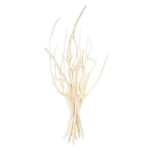 De aroma branch van @aroma in de kleur wit,verpakt in 10 stuks. Professioneel geursysteem